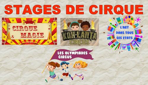 Stages cirque ete